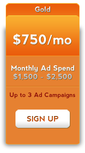 facebook advertising 750 dollars a month service package